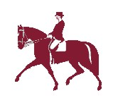 Logo Dressur Lehrgang